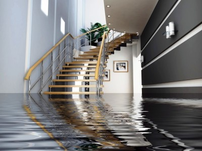 water-removal-west-hollywood